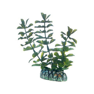 Plast växt- Bacopa 13cm
