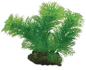 Plast växt- Egeria 13cm