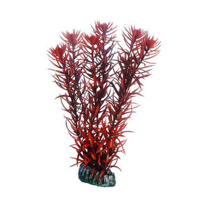 Plast växt- Eusteralis 20cm