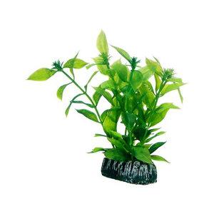 Plast växt- Hygrophila 13cm