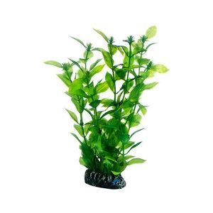 Plast växt- Hygrophila 20cm
