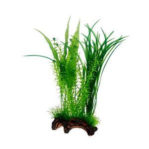 Flora rot 1. 30cm