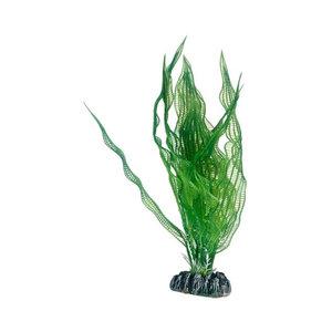 Plast växt- Aponogeton 25cm