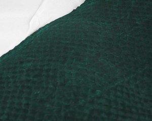 Fiskskinn av lax. Blank grön, ca 24*6 cm