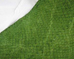 Fiskskinn av lax. Blank äppelgrön, ca 24*6 cm