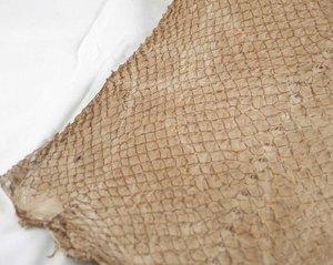 Fiskskinn av lax. Blank beige, ca 24*6 cm