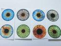 Bilder till runda glascabochoner, 25 mm. Ögon, 4 stycken.
