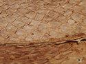 Fiskskinn av lax. Matt ljusbrun, ca 24*6 cm
