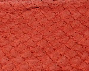 Fiskskinn av lax. Matt röd, ca 24*6 cm