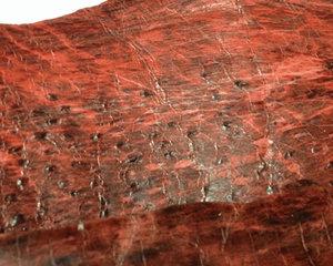 Fiskskinn av havskatt. Ljusröd, ca 24*6 cm