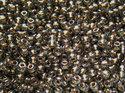 TOHO seedbead 11/0, Gold Lined Black Diamond. 5 gram.