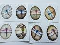 Bilder till ovala glascabochoner, 24*18 mm. Trollsländor, 4 stycken.