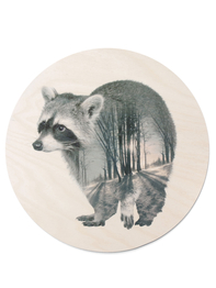 Print on plywood Faunascapes - Raccoon