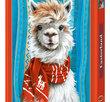 I am the Llama 500 Bitar Castorland