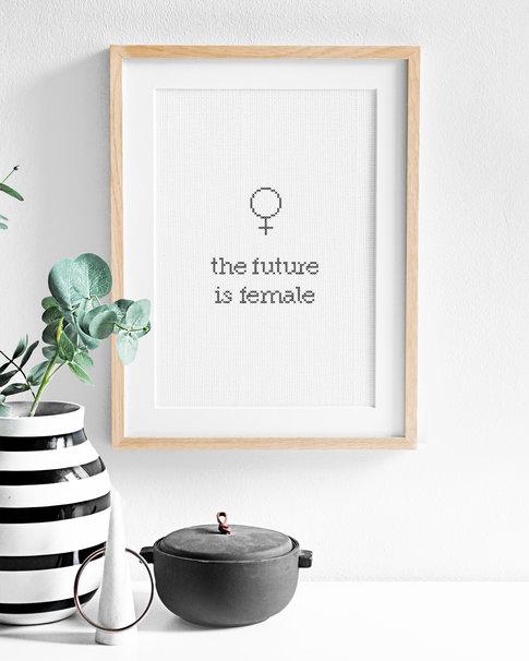 Broderikit aida - The future