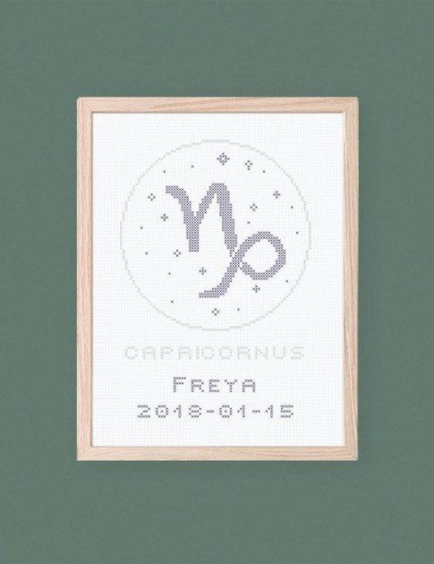 Capricornus - Zodiac signs