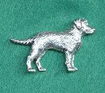 PIN Labrador