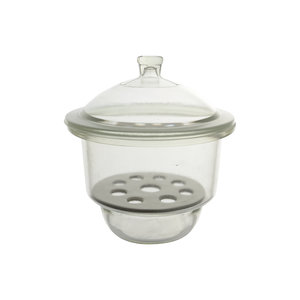 Dessicator with knobbed lid and porcelain plate, 300mm, LBG N