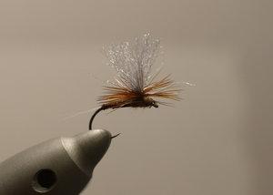Mahogany brown