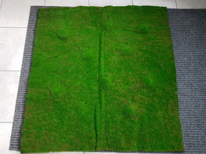 Gräsmatta 100x100cm (1kvm)