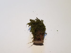 Buske 3cm Olivgrön