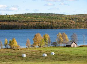 Tornedalen Ruokojärvi