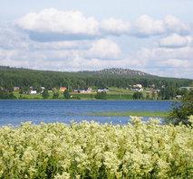 Tornedalen Armasjärvi