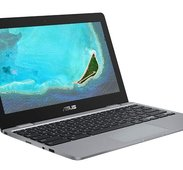 Asus Chromebook C223NA-GJ0002
