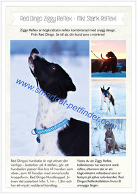 Reklamblad Red Dingo A4 Ziggy