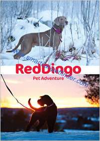 Affisch Red Dingo Vinter 1