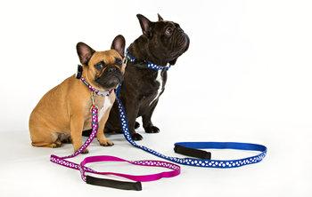 Hundhalsband Spots Lila