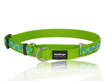 Stars Martingale dog collar Lime