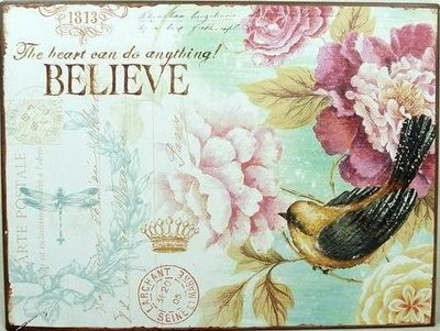 Plåtskylt skylt Believe rosa rosor fågel romantisk shabby chic