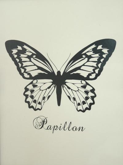 Bild Fjäril Pappilon i kraftig papp