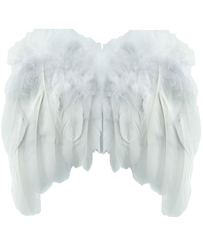 Vita vingar änglavingar fjädrar shabby chic, lantlig stil