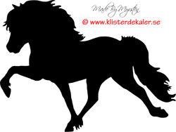 Icelandic horse 32