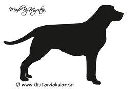 Labrador dekal