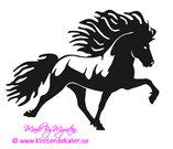 Enkel Islandshäst 28