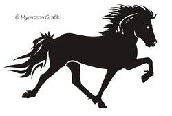 Enkel Islandshäst 2