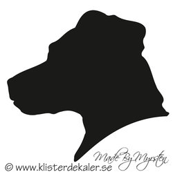 Jack Russell Terrier hed profile