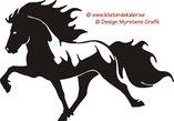 Enkel Islandshäst 12
