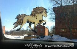 Single Icelandic horse 13 color