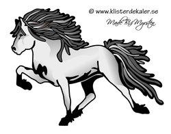 Single Icelandic horse 14 color