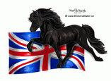Icelandic horse England flag
