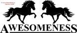Awesomeness Islandshästar
