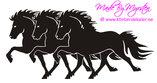Trippel Islandshäst 3 Tölt