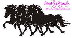 Triple Icelandic horse 3