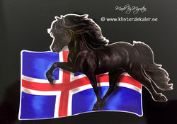 Islandshäst med Islands flaggan, bildekor