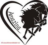 "Islandshästar ""Amazing"""