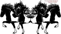 4 dubbel Islandshästar skäckar